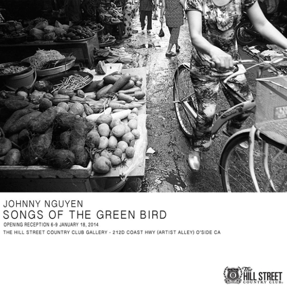 Songs Of Green Bird