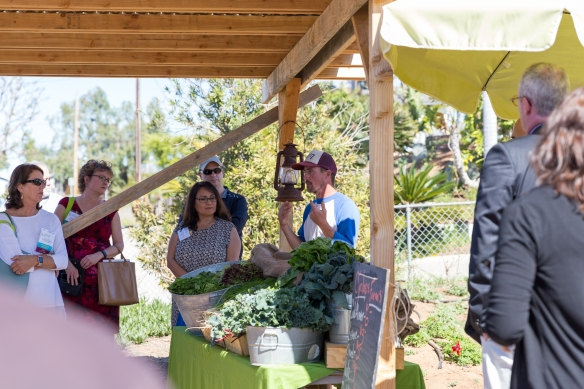 MSO_farm_to_table-6