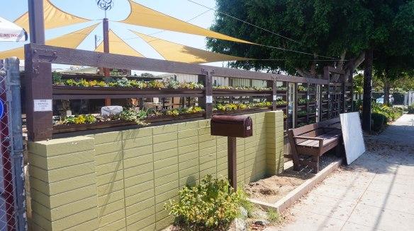 succulent cafe exterior 2