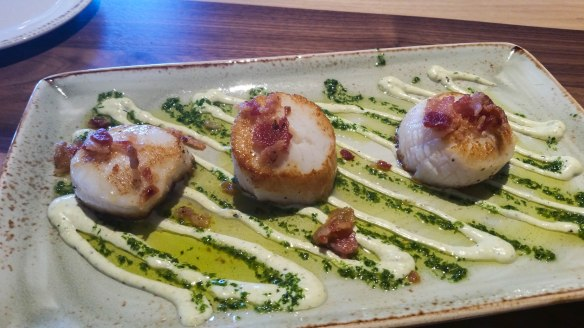 scallops (1 of 1)